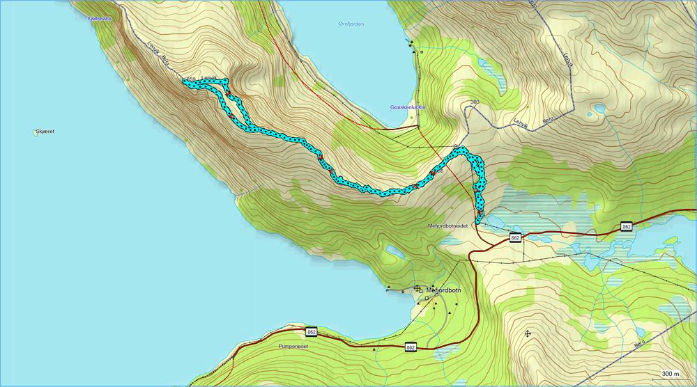 На заполярных островах (Сенья-Лофотены, август 2012, трафик!)